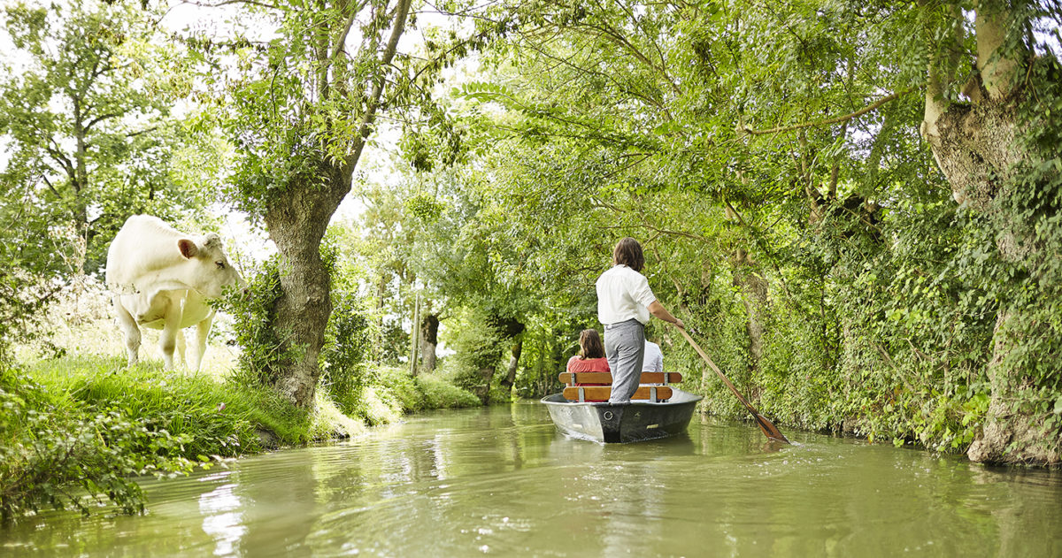 """La """"plate"""", idéal pour découvrir le marais mouillé et la Venise"""